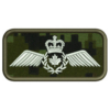 Pilot Operational Wing Badge Patch Preview