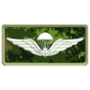 White Parachutist Wing Patch Preview